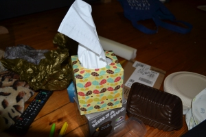 A box of tissues (unused).