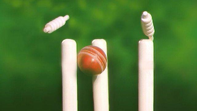 archers cricket